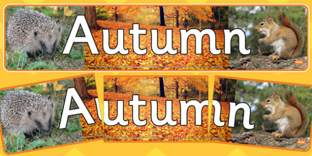 Autumn Photo Display Banner - autumn, photo display banner, photo banner, display banner, banner,  banner for display, display photo, display, picture, photo