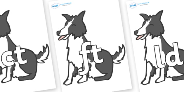 Final Letter Blends on Sheep Dogs - Final Letters, final letter, letter blend, letter blends, consonant, consonants, digraph, trigraph, literacy, alphabet, letters, foundation stage literacy
