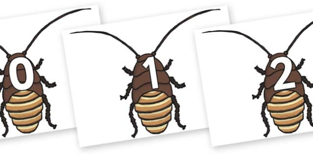 Numbers 0-100 on Cockroach - 0-100, foundation stage numeracy, Number recognition, Number flashcards, counting, number frieze, Display numbers, number posters