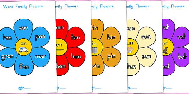 Word Family Flowers - australia, word, family, flowers, flower