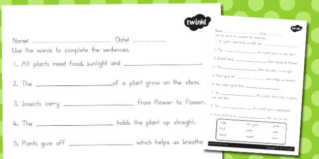 Plant Vocabulary Worksheet - australia, plant, vocabulary, sheet