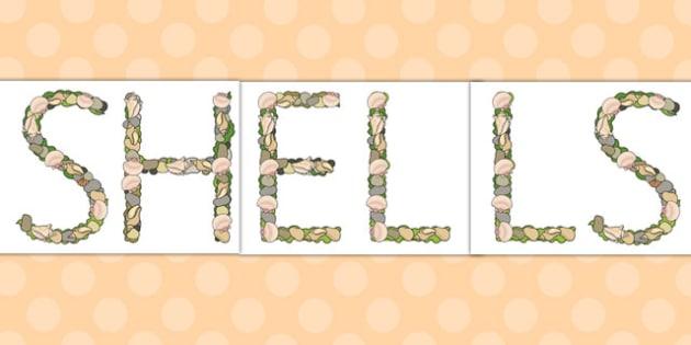 Shells Pebbles and Seaweed Display Lettering - display, header, title, sea, coast,