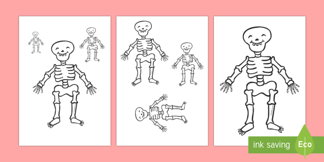 Measuring Skeletons Activity
