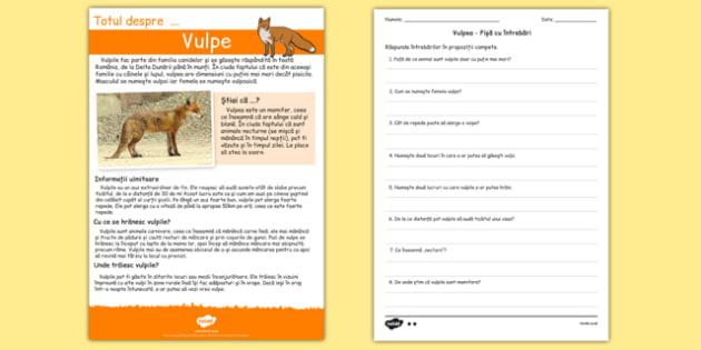 Totul despre vulpe - Fișă de lectură cu întrebări - Totul despre vulpe, Fișă de lectură cu întrebări - comprehensiune, citire, animale, lectură, materiale, materiale didactice, română, romana, material, material didactic