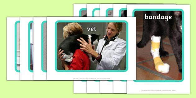 Vet's Surgery Display Photos - Vets, vet, photo, display Photos, display, photos, Vet Surgery, pets, pet, role play, vets role play, vet, operation, xray, nurse, medicine, vaccine, bandage, cat, dog, rabbit