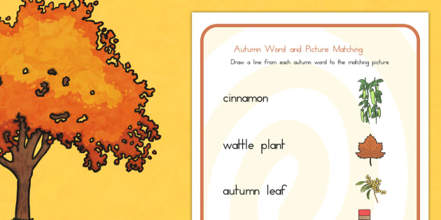 Autumn Word and Picture Matching Worksheet - seasons, match, sort