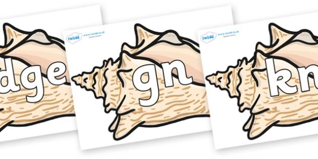 Silent Letters on Conch Shells - Silent Letters, silent letter, letter blend, consonant, consonants, digraph, trigraph, A-Z letters, literacy, alphabet, letters, alternative sounds