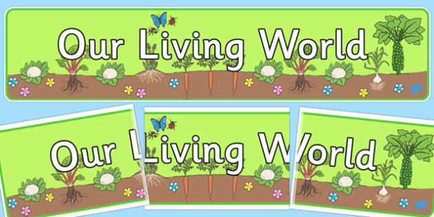 Our Living World Display Banner - living world, display banner