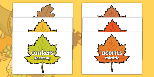 Autumn Words On Leaves Polish Translation-Polish-translation