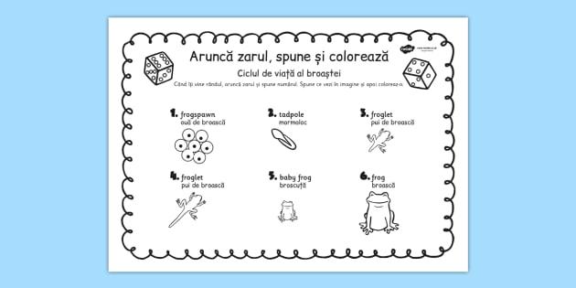 Ciclul de viață la broască - Aruncă zarul și colorează
