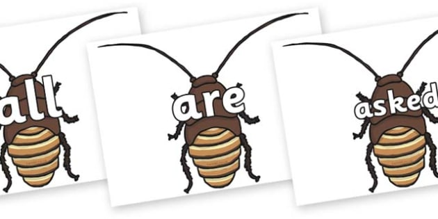Tricky Words on Cockroach - Tricky words, DfES Letters and Sounds, Letters and sounds, display, words