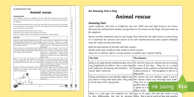 Animal Rescue Activity Sheet