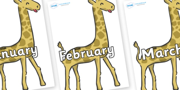 Months of the Year on Giraffe - Months of the Year, Months poster, Months display, display, poster, frieze, Months, month, January, February, March, April, May, June, July, August, September