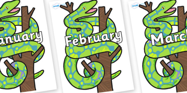 Months of the Year on Boa Constrictor to Support Teaching on The Bad Tempered Ladybird - Months of the Year, Months poster, Months display, display, poster, frieze, Months, month, January, February, March, April, May, June, July, August, September
