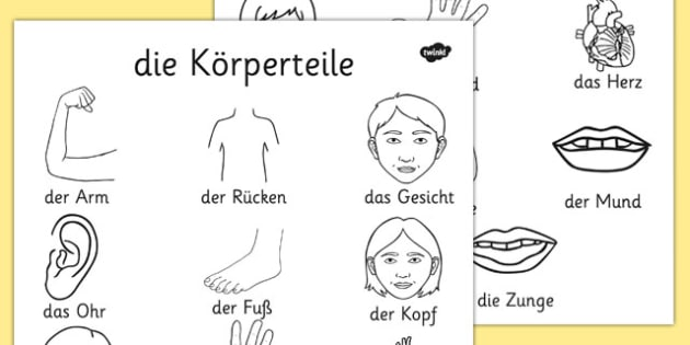die Körperteile Dictionary Colouring Sheet German - german, my body, dictionary, colouring, sheet, colour