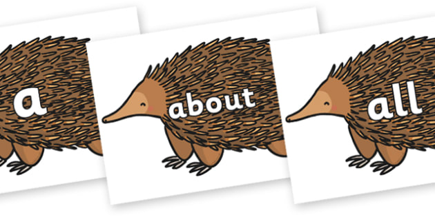 100 High Frequency Words on Echidna - High frequency words, hfw, DfES Letters and Sounds, Letters and Sounds, display words