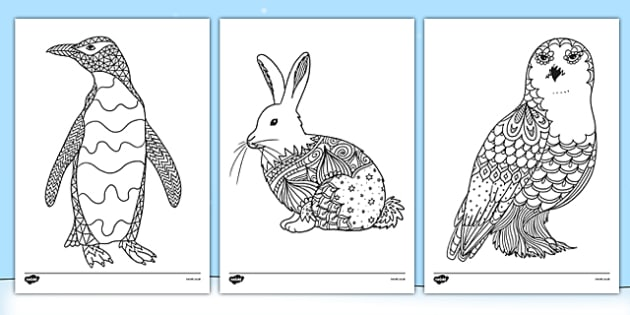 polar animals mindfulness colouring sheets arctic animals mindfulness colouring sheets - Arctic Colouring Pages