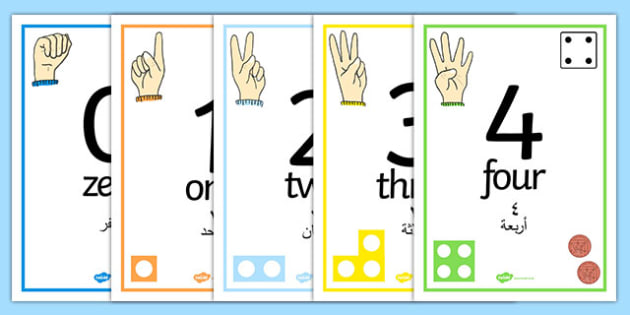 Visual Number Line Posters 1-30 Arabic Translation - arabic, visual, numberline, posters