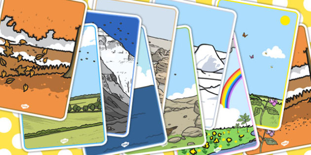 The Tiny Seed A4 Picture Cards - picture, cards, tiny, seed