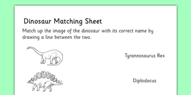 Realistic Dinosaurs Matching Sheet - realistic, dinosaurs, matching, sheet, match