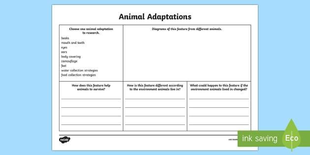 Animal Adaptations Research Activity Sheet-Australia - adaptions, animal adaptation, evolution, animal evolution, adapting, animal features, animal researc