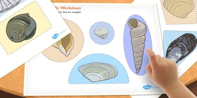 British Seashell Cutting Skills Worksheet - british, seashell