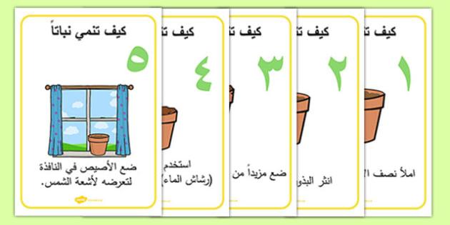 كيف تنمي نباتاً - تنمية، زراعة، وسائل، نشاط، عربي