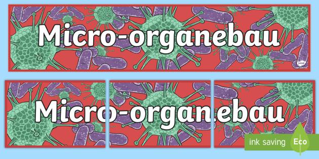 Baner Micro-organebau - welsh, cymraeg, micro organebau, baner