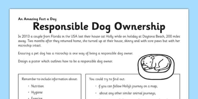Responsible Dog Ownership Activity Sheet - pet, dog, responsible, worksheet