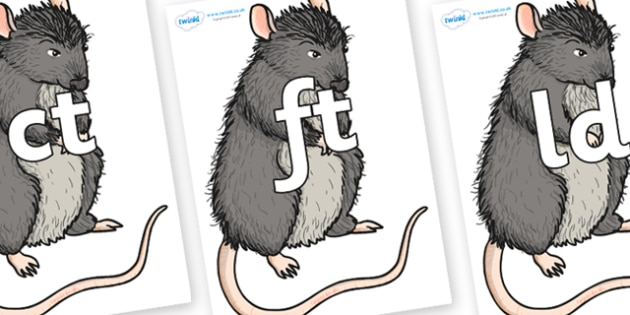Final Letter Blends on Templeton - Final Letters, final letter, letter blend, letter blends, consonant, consonants, digraph, trigraph, literacy, alphabet, letters, foundation stage literacy