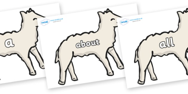 100 High Frequency Words on Lambs - High frequency words, hfw, DfES Letters and Sounds, Letters and Sounds, display words