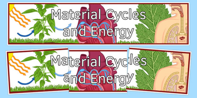Material Cycles and Energy Display Banner - material cycles and energy, ks3, biology, display banner