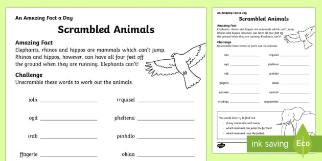 Scrambled Animals Activity Sheet