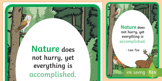 Woodland Creature Inspirational Quote by Tzu Display Poster - Woodland, animal, wood, creature, classroom, display, banner, trees