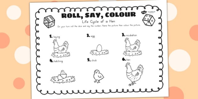 Life Cycle Of A Hen Roll Say Colour - life cycles, dice games