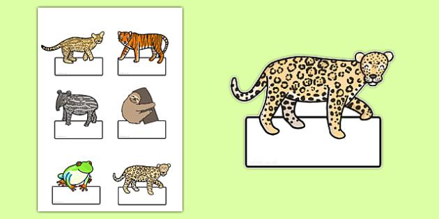 Editable Jungle Animals Labels - jungle, animals, label, editable
