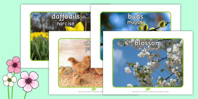 Spring Display Photos Romanian Translation - displays, seasons
