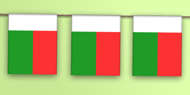 Madagascar Flag Bunting - madagascar flag, madagascar, flag, display bunting, display, bunting