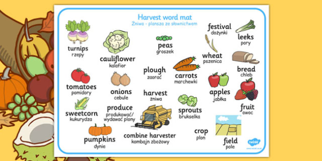 Harvest Word Mat Polish Translation - polish, harvest, word mat, word, mat