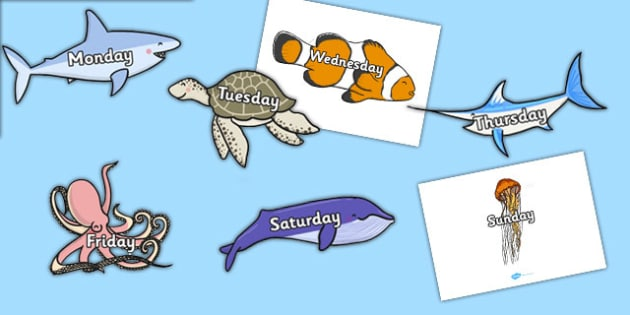Days of the Week on Sea Creatures (Under the Sea) - Sea creature, Weeks poster, display, poster, frieze, Days of the week,  fish, under the sea, sea, seaside, display, posters, water, tide, fish, sea creatures, shark, whale, marine, dolphin, starfish
