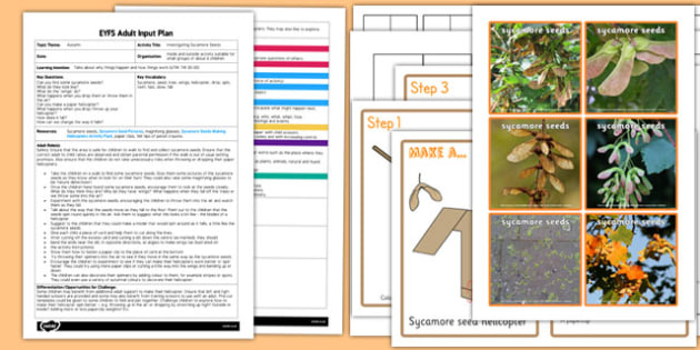Investigating Sycamore Seeds EYFS Adult Input Plan and Resource Pack
