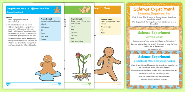 EYFS The Gingerbread Man Science Experiments Resource Pack - The Gingerbread Man, Traditional Tales, gingerbread, ginger root, growing things, science experiment
