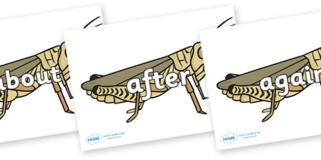 KS1 Keywords on Grasshoppers - KS1, CLL, Communication language and literacy, Display, Key words, high frequency words, foundation stage literacy, DfES Letters and Sounds, Letters and Sounds, spelling