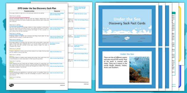 EYFS Under the Sea Discovery Sack - EYFS, under the sea, sack