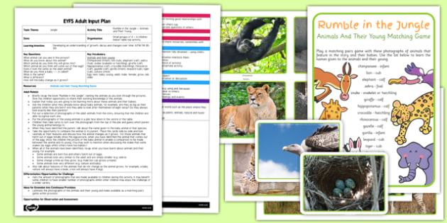 EYFS Jungle Animals and their Young Adult Input Plan and Resource Pack to Support Teaching on Rumble in the Jungle