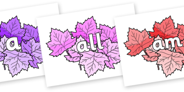 Foundation Stage 2 Keywords on Autumn Leaves (Multicolour) - FS2, CLL, keywords, Communication language and literacy,  Display, Key words, high frequency words, foundation stage literacy, DfES Letters and Sounds, Letters and Sounds, spelling