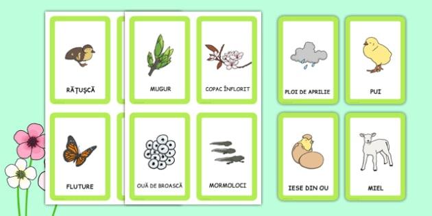 Primăvara - Joc de memorie - primăvara, decor, joc de memorie, imagini, planșe, cuvinte, anotimpuri, anotimp, materiale didactice, română, romana, material, material