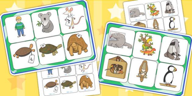 Matching Mat SEN to Support Teaching on The Great Pet Sale - pets, animals, matching mat