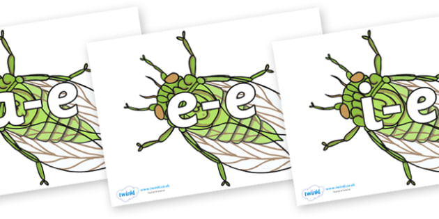 Modifying E Letters on Cicada - Modifying E, letters, modify, Phase 5, Phase five, alternative spellings for phonemes, DfES letters and Sounds