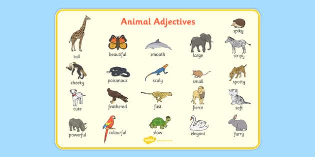 Animal Adjectives Word Mat - animal adjectives, word mat, word, mat, animal, adjectives